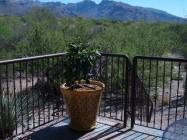 2br Condo for rent in Tucson AZ 5800 N Kolb Road