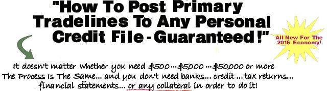 how to post primary tradelines