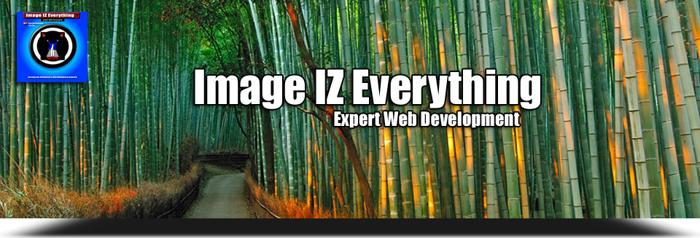 ? Image IZ Everything.com - Expert Website Development, Design, Maintenance. AVAIL 24hrs
