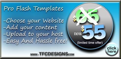 IMPACT Web Design -$65