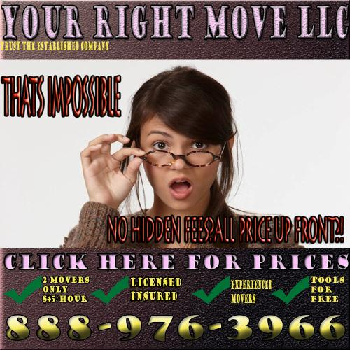 Moving laborers professionals
