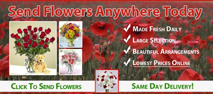 Same Day Flower Delivery Sheboygan WI