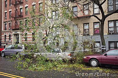 To help you with your Hurricane Sandy insurance claim