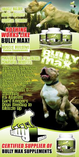 Year Supply Of Bully Max Dog Supplements 33% OFF PLUS FREE SHIPPING